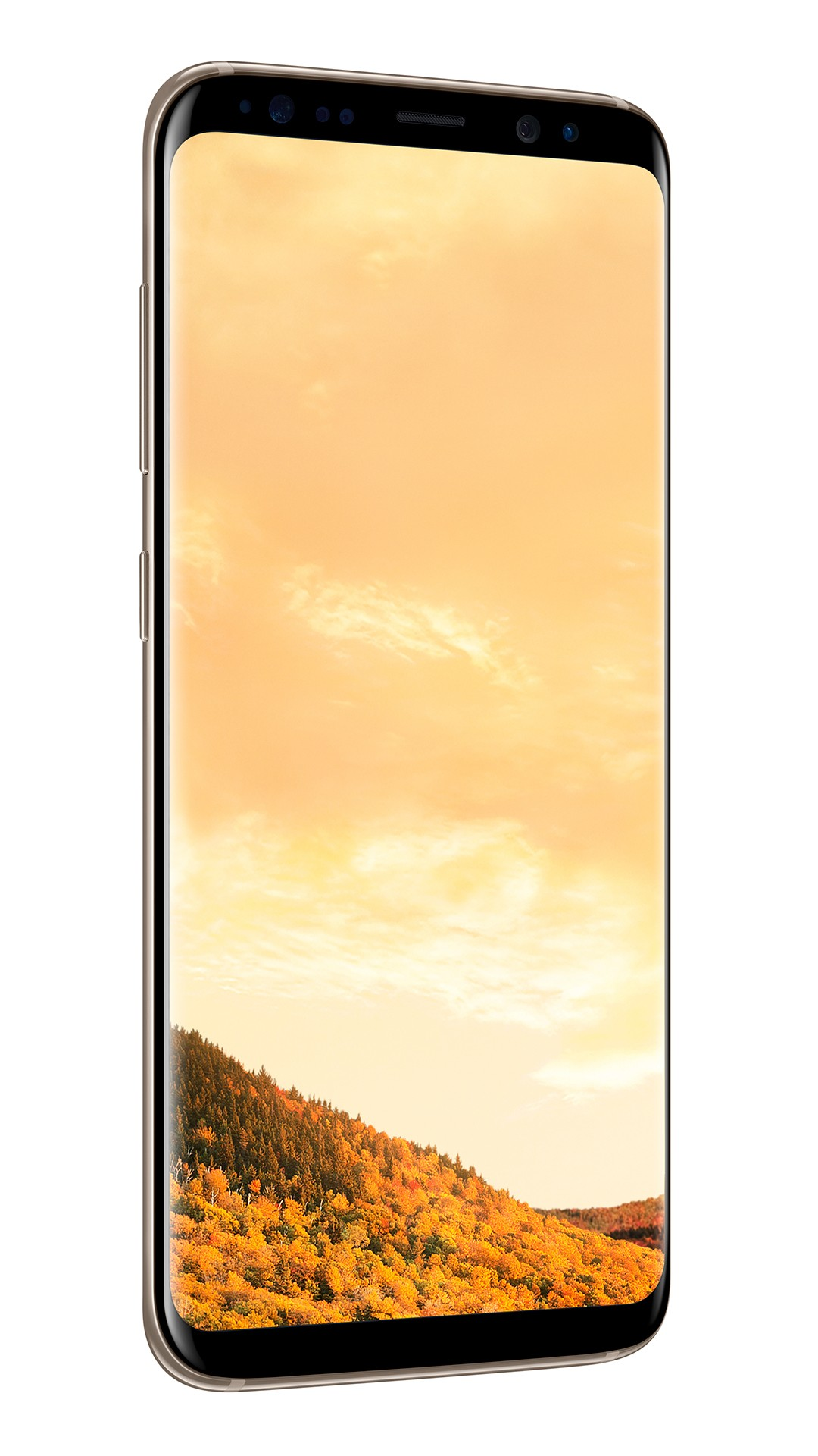 Samsung Galaxy S8+ Dual Sim, 64 GB, Black